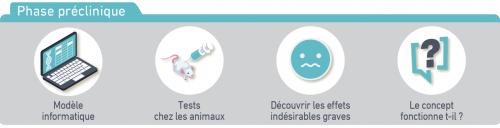 Développement vaccins phase préclinique
